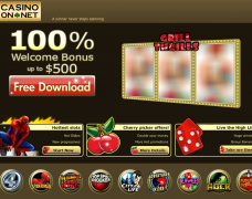 Casino On Net Website